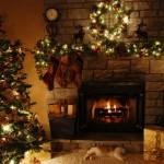 Quel sapin de Noël choisir ?