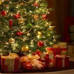 Comment conserver le sapin de Noël ?