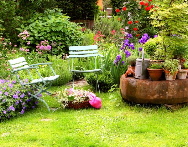 plantes massif jardinerie riera. Black Bedroom Furniture Sets. Home Design Ideas