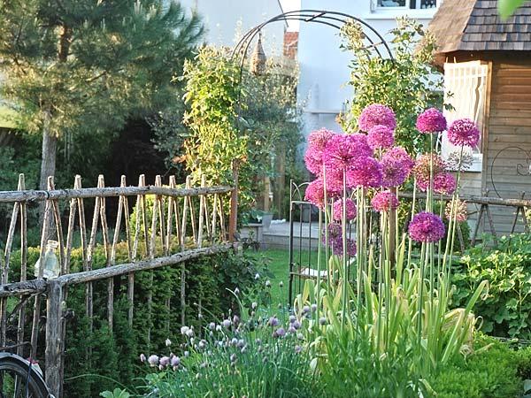 Mai au jardin d\'ornement - Jardinerie Riera