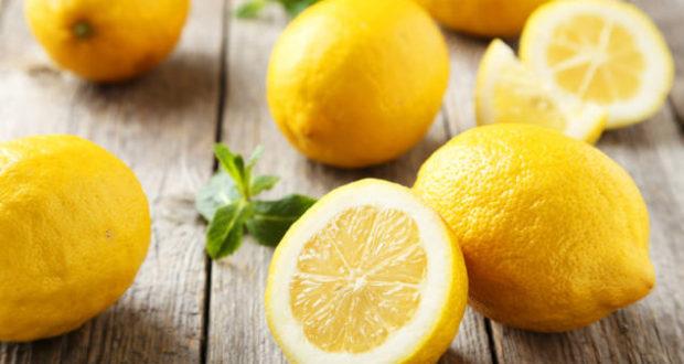 citron jardinerie riera venelles 2