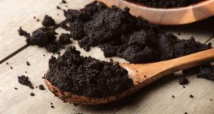 Marc de café : comment l'utiliser au jardin pour de belles plantations ?