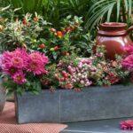 jardiniere-riera venelles aix en provence