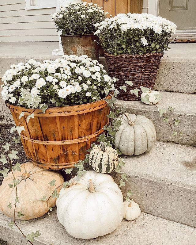 deco entree maison jardinerie riera automne6