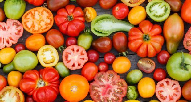Guide de variété de tomates